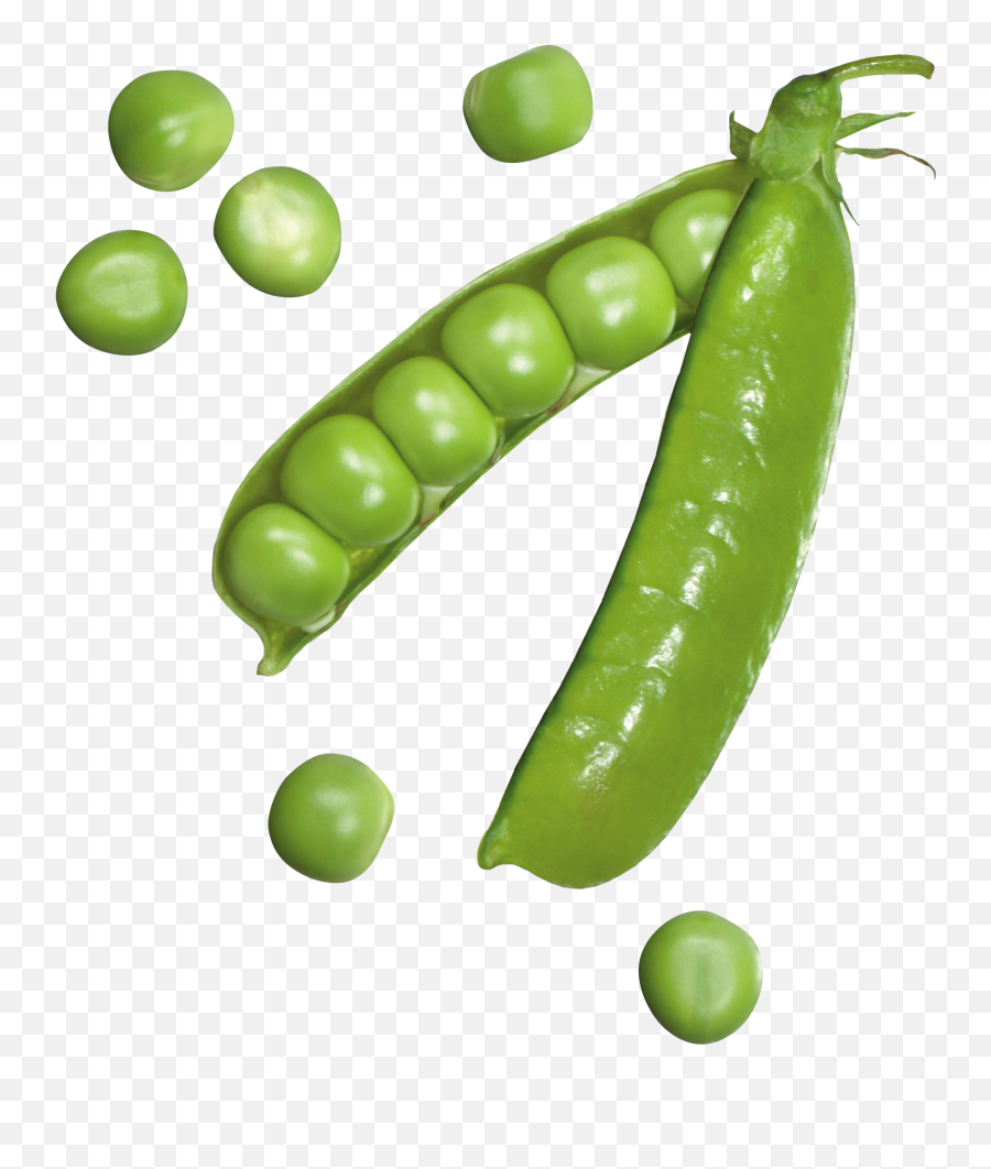 Pea Png Images Free Download - Pea Png,Peas Png