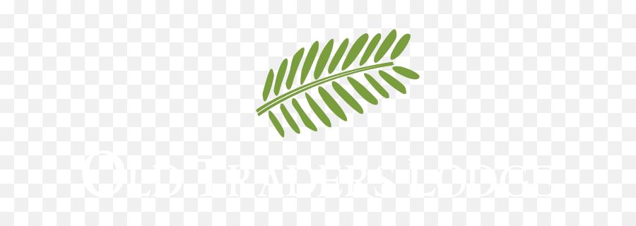 Erindi Private Game Reserve - Language Png,Safari Logo Aesthetic