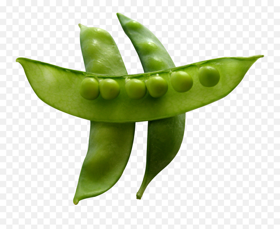 Snow Peas Png Image - Snow Peas Png,Peas Png