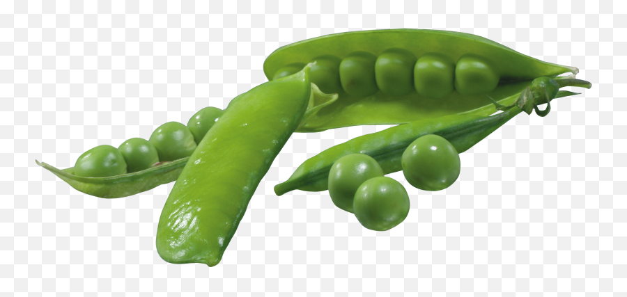 Pea Png Images Free Download - Peas In Pod Png,Peas Png