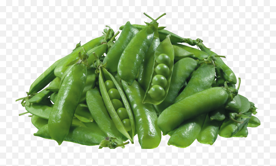 Pea Png Icon - Transparent Green Pea Png,Peas Png