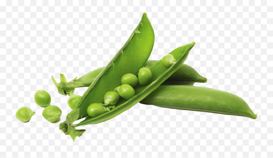 Pea Png Pic Background - Pea Png,Peas Png