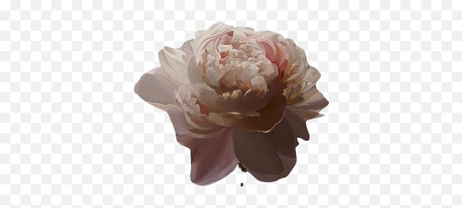 Flower Art Png Transparent Image - Transparent Brown Aesthetic Png,Transparent Aesthetic