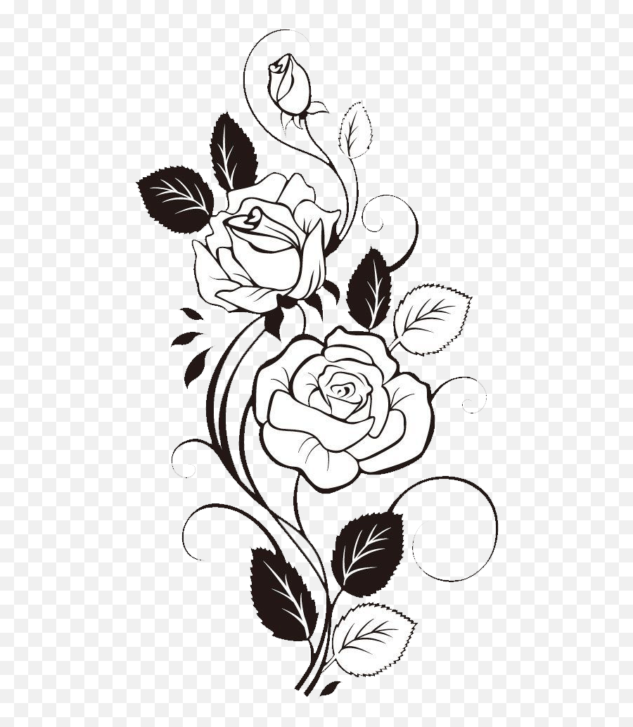 Sunflower Clipart Black And White Rose With Vines Drawing Black And White Rose Clipart Png Rose Vines Png Free Transparent Png Images Pngaaa Com