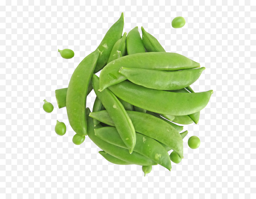 Snap Peas Ingredient Guide For Health - Snap Pea Png,Peas Png