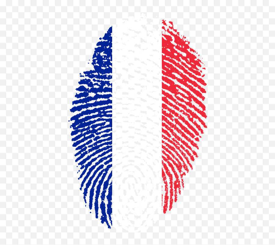 France Flag Png Transparent Free Images France Flag Fingerprint Free Transparent Png Images Pngaaa Com