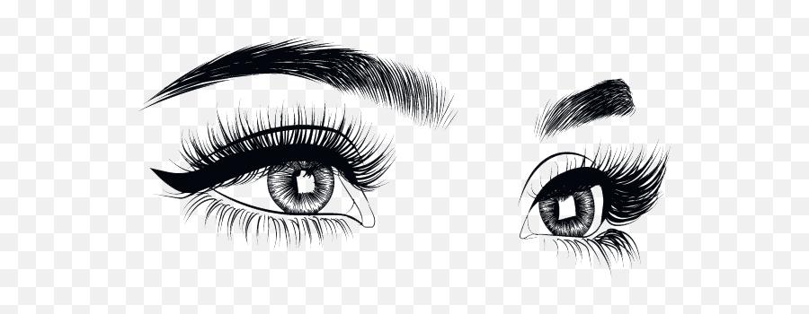 Lashes Png Transparent Images - Eyelashes Png