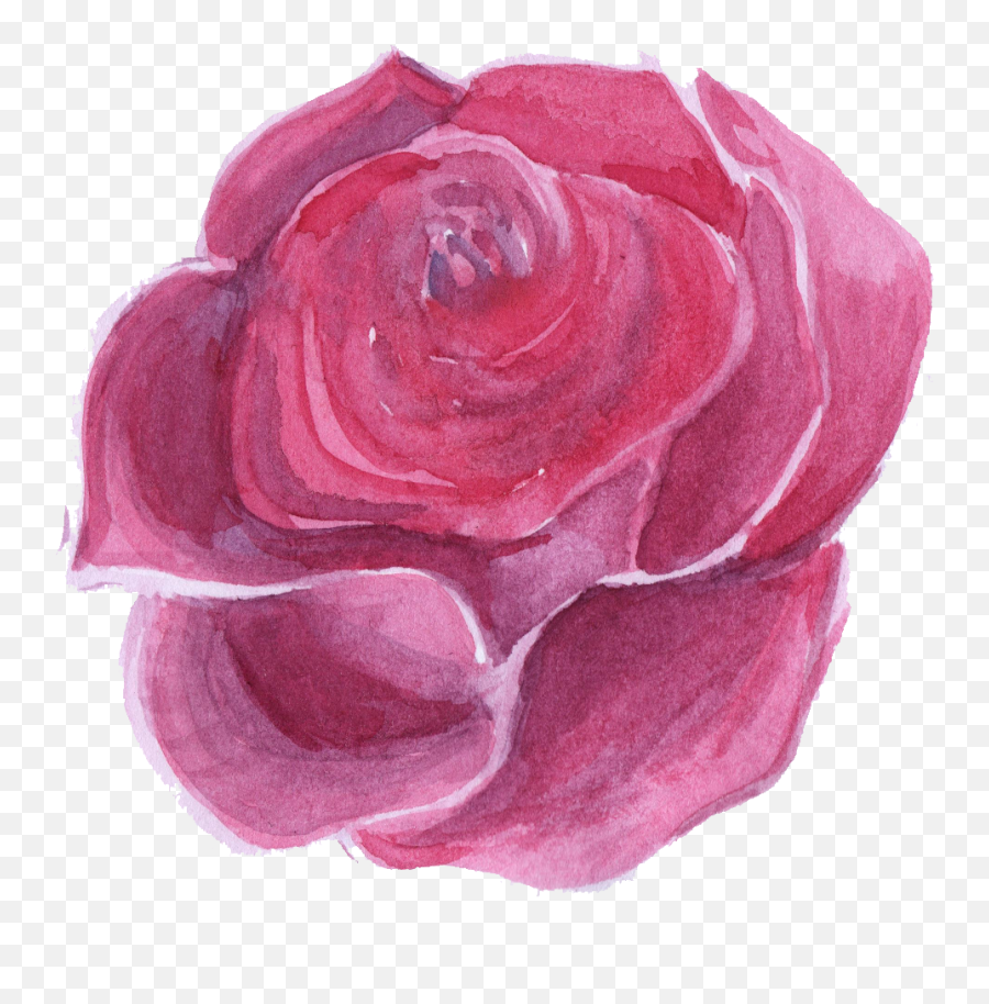 Download Hd Pink Watercolor Flower Png - Lovely,Water Color Flower Png