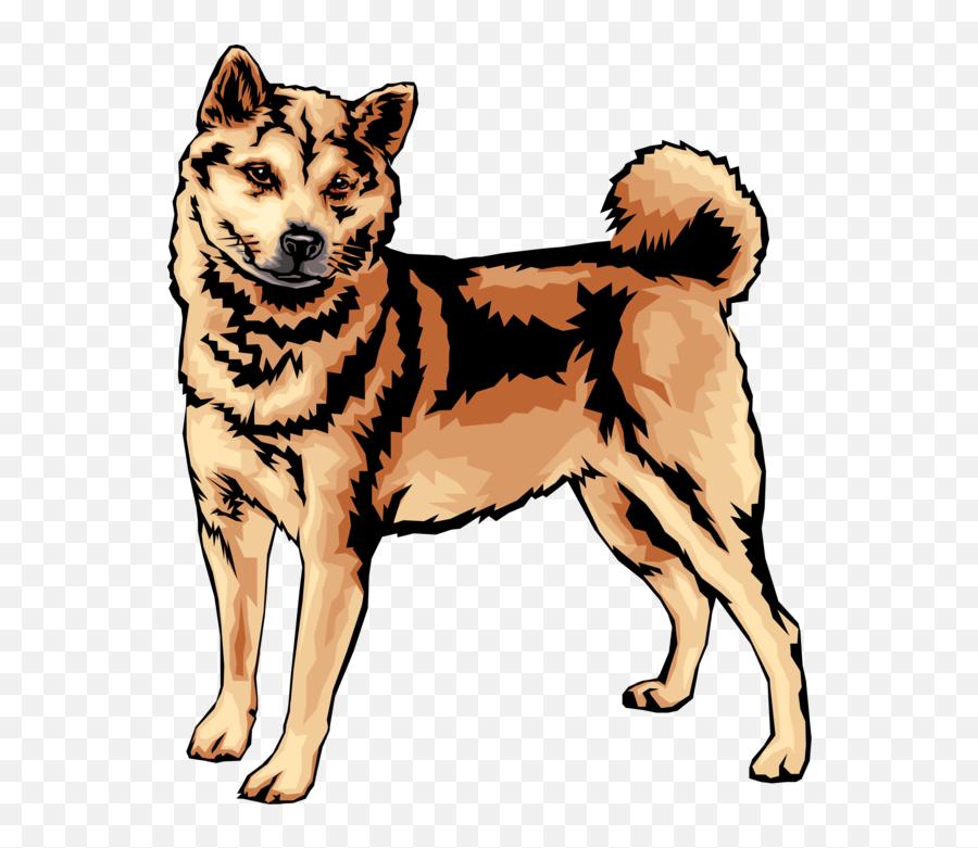 Doggo Png - Shiba Inu Dog Vector