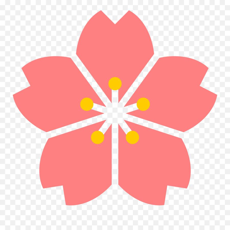 Cherry Blossom Flower Japan - Cherry Blossom Flower Png