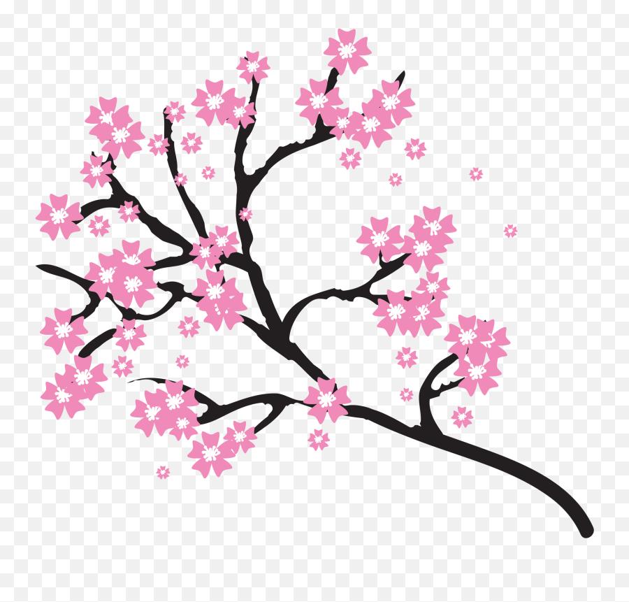 Japanese Cherry Blossom Clip Art - Cherry Blossom Flowers Clip Art png