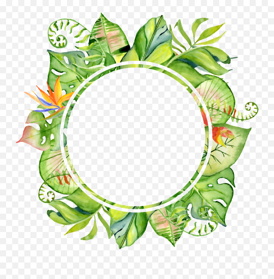 Leaf Frame Png Transparent Leaves Tropical Circle Png Free Transparent Png Images Pngaaa Com ✓ free for commercial use ✓ high quality images. leaf frame png transparent leaves