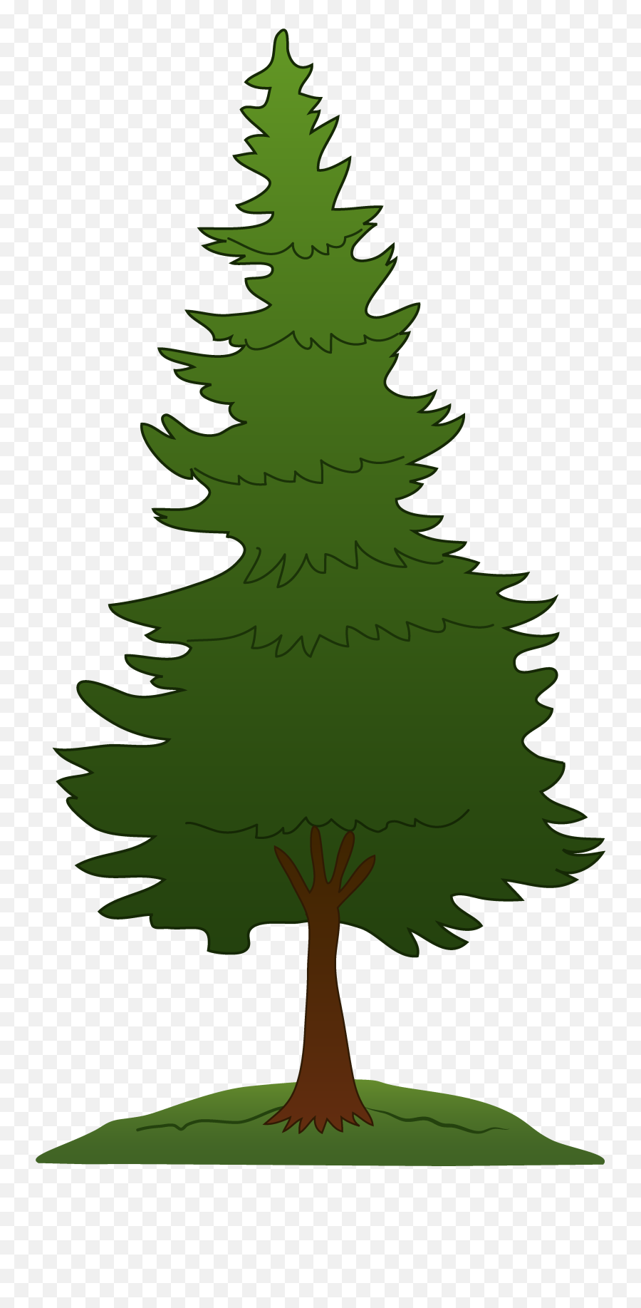 Library Of Forest Trees Clip Art Transparent Background Pine Tree Clipart Png Forest Tree Png Free Transparent Png Images Pngaaa Com