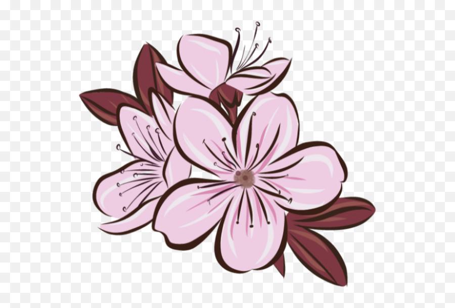 Sakura Flower Png - Lily