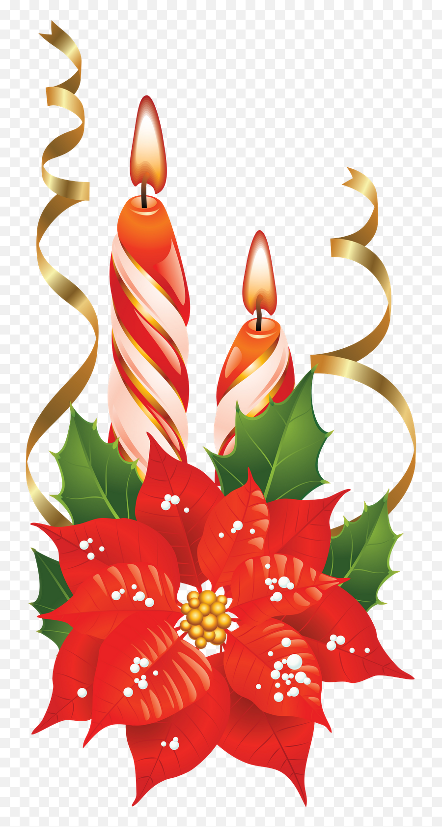 Holly Clipart Design Transparent Free For   Christmas Greeting Png ...