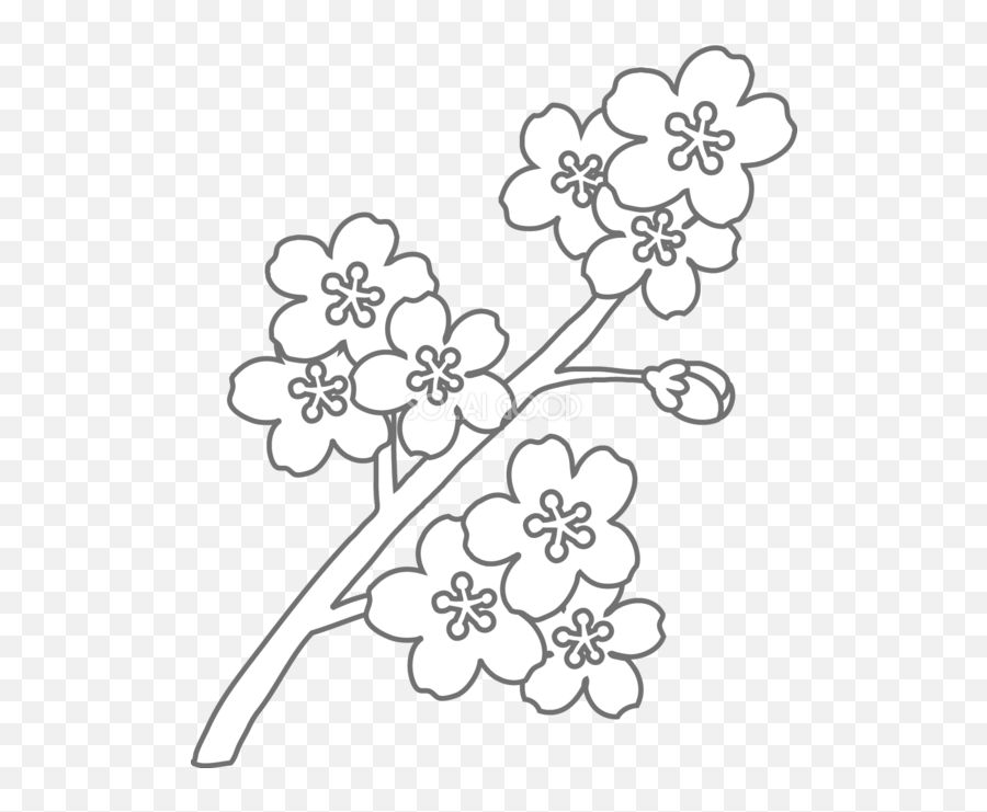 Coloring Book Floral Design Black And - Sakura Flower Black And White png