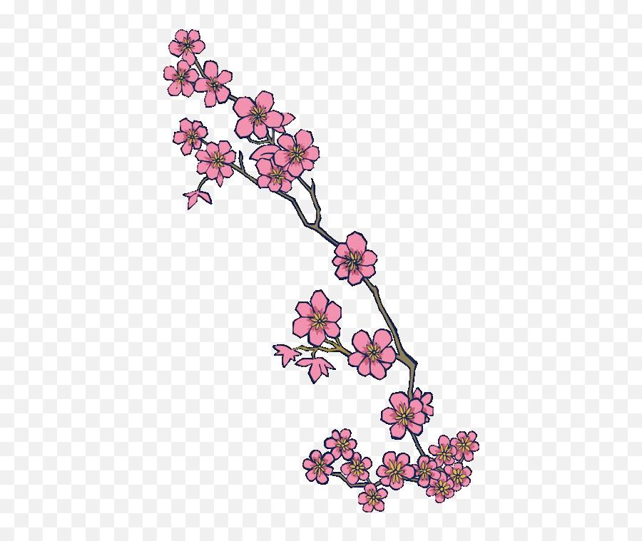 Cherry Blossom Hd Png Clipart - Cherry Blossom Tattoo Designs