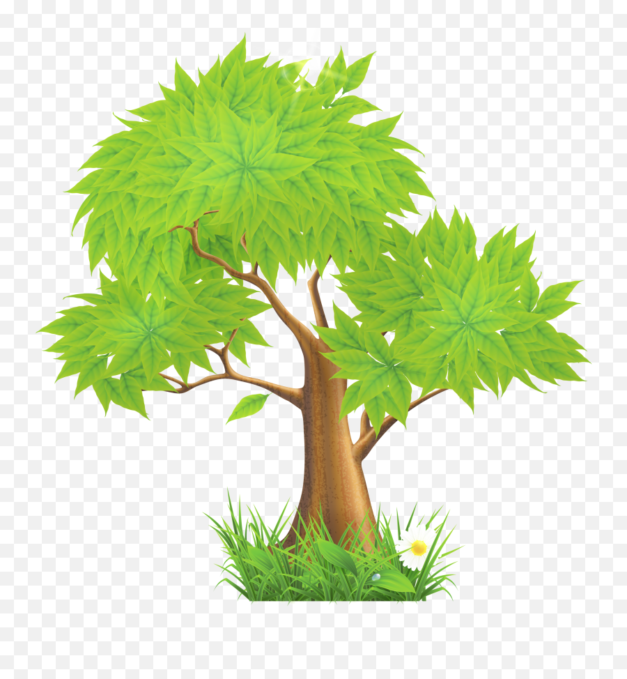 Eucalyptus Clipart Forest Tree Full Size Png Download Trees Clip Art Png Forest Tree Png Free Transparent Png Images Pngaaa Com