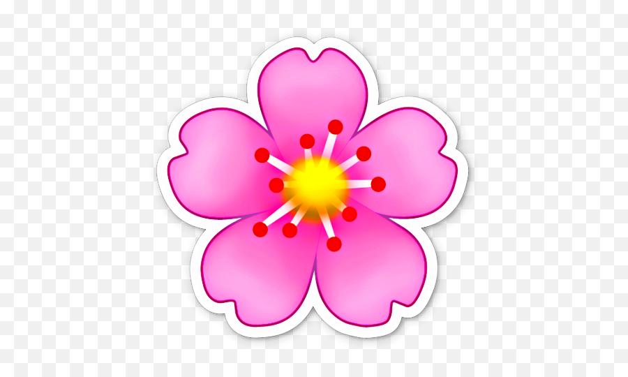 Sticker Peacock Feathers Festa De Aniversário Flamingo - Cherry Blossom Emoji Png