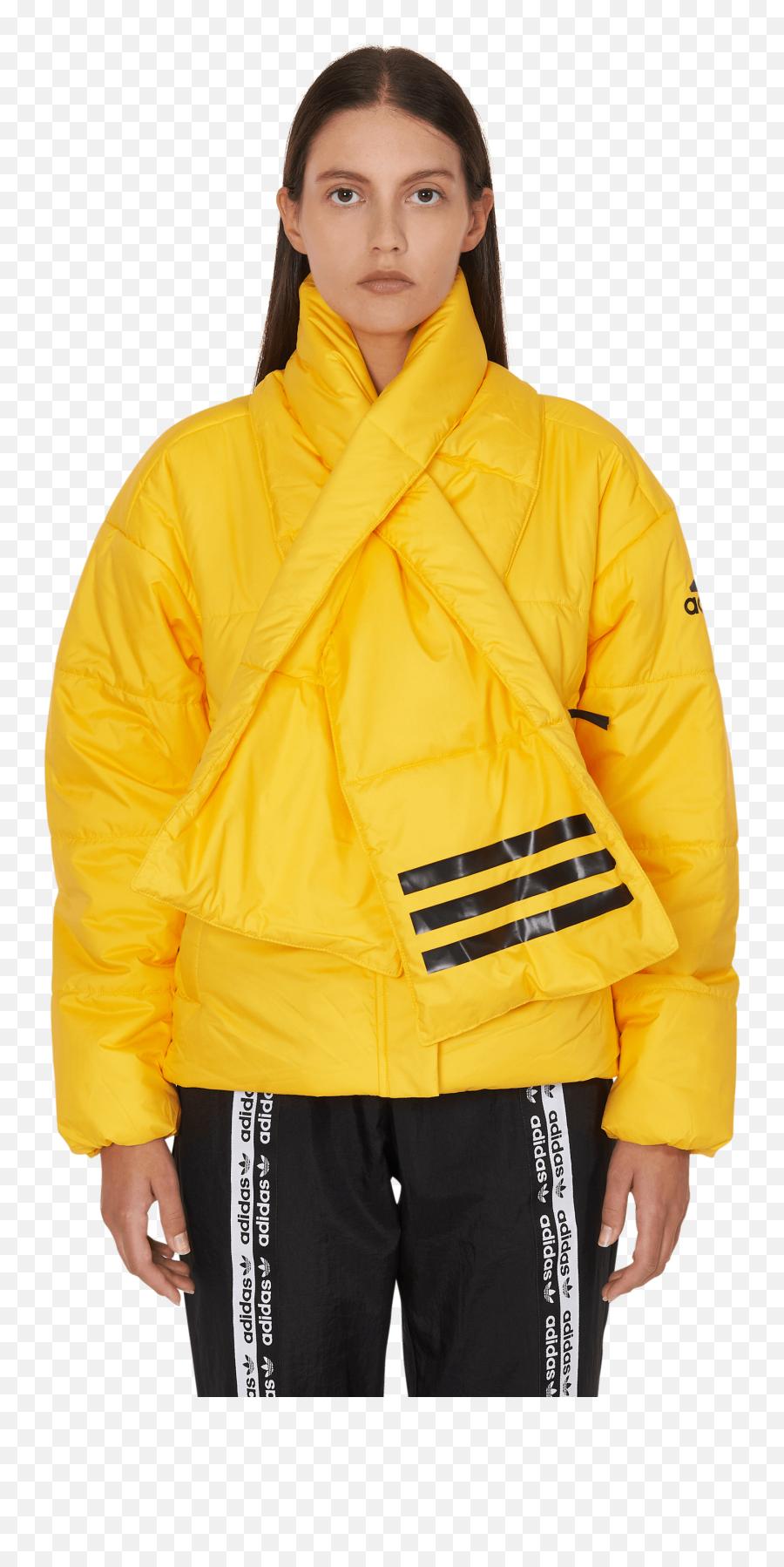 canal Exquisito toma una foto  Adidas Originals Big Baffle Bomber - Pull Lacoste Jaune Femme png - free  transparent png images - pngaaa.com
