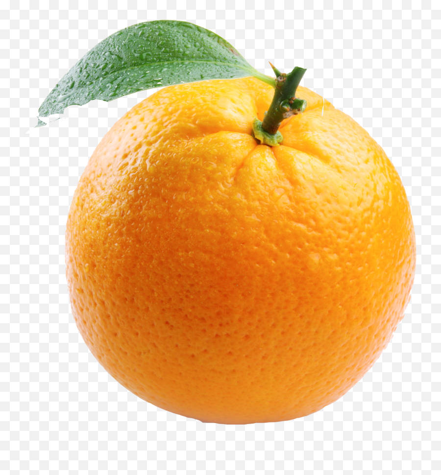 Download Orange Free Png Image - Free Transparent PNG Images  Things With Color Orange
