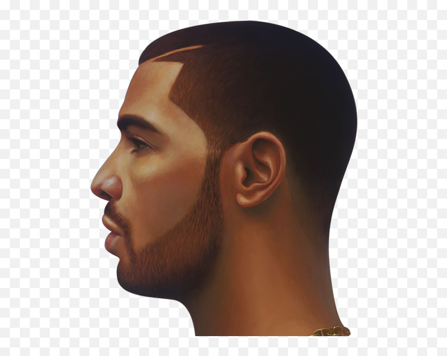 Download Drake Face Png Image Nothing Was The Same Drake Head Free Transparent Png Images Pngaaa Com