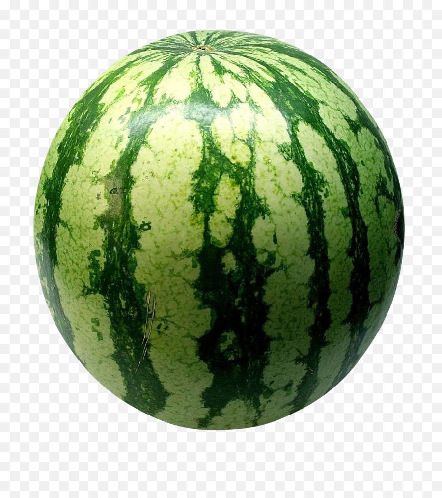 Big Green Watermelon - Fruits Watermelon Transparent Watermelon Png,Watermelon Png Clipart
