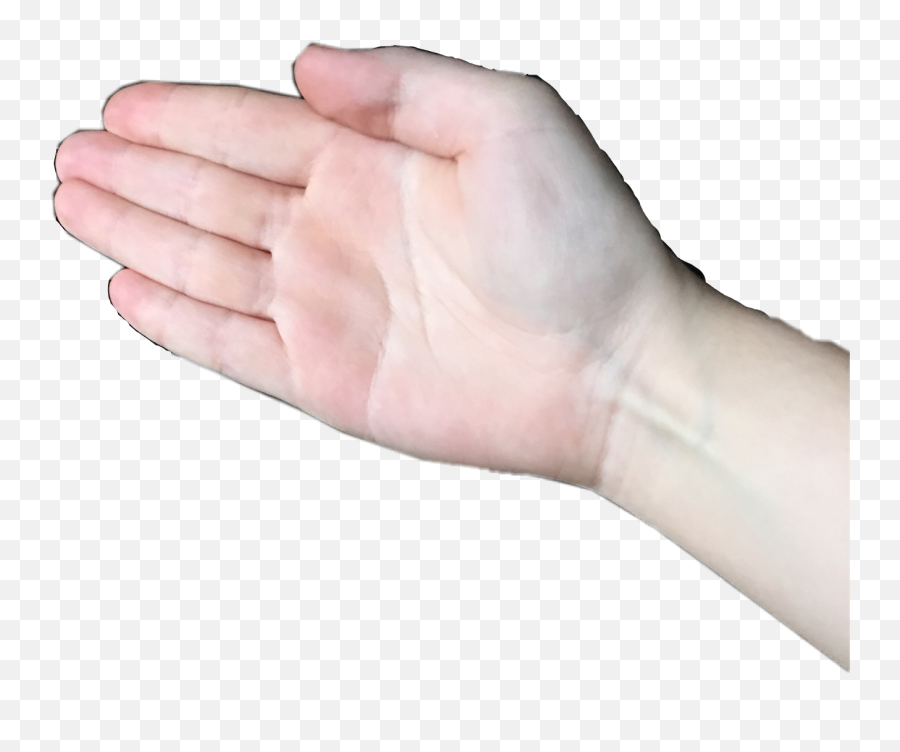 Download Hd Boi Bruh Look Boi Hand Png Free Transparent Png Images Pngaaa Com One hand png hd quality. download hd boi bruh look boi hand