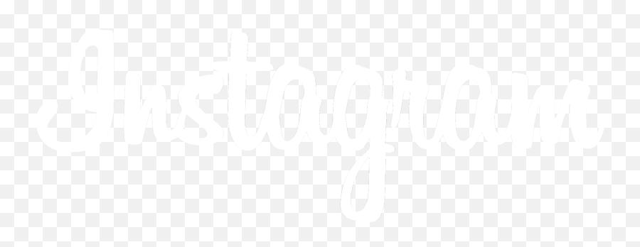 60 Instagram White Logo Transparent Background For Free Png No