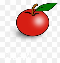 7 clipart tomato, 7 tomato Transparent FREE for download on WebStockReview  2020
