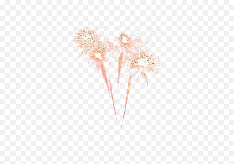 Fireworks Png - Transparent Background Fireworks Png Hd,Fireworks Transparent Background