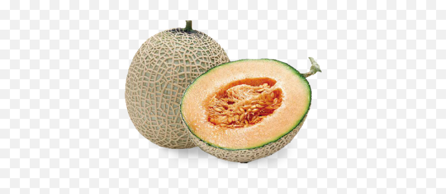Branded Cantaloupe Area Yubari King Melon Price Png Free Transparent Png Images Pngaaa Com 428 likes · 31 talking about this. yubari king melon price png