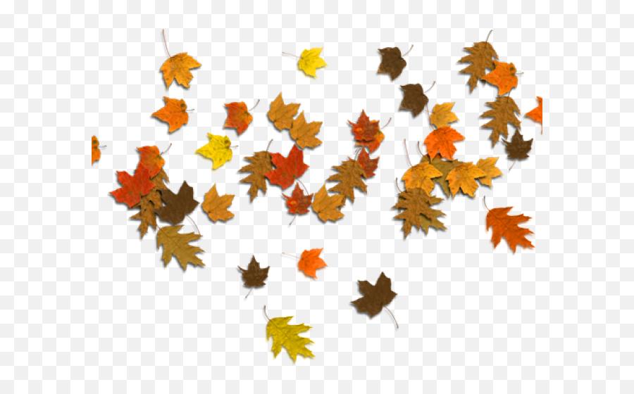 Autumn Leaves Clipart Corner Border - Autumn Leaves Clipart Png,Autumn Leaves Transparent Background
