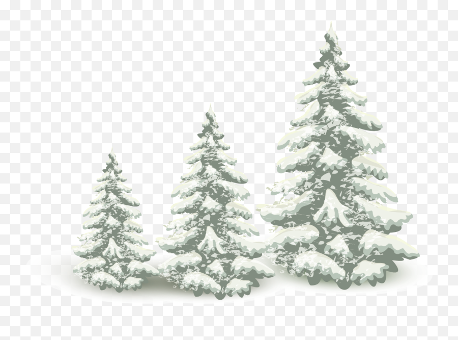 Falling Snow Pine Tree Png Download - Falling Snow Transparent Png