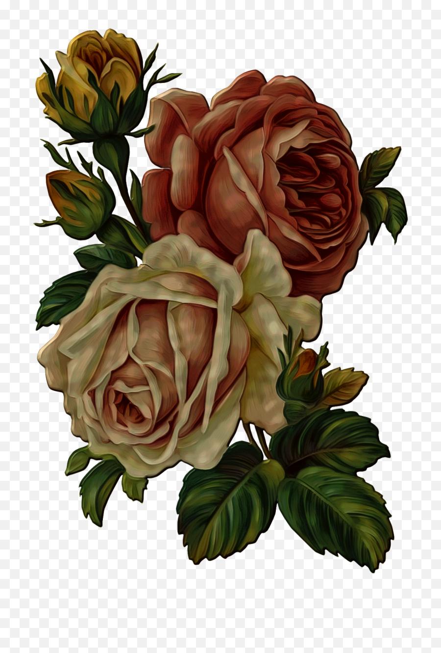 Vintage Rose Flower Png Transparent - Vintage Flower Png,Vintage Flower Png