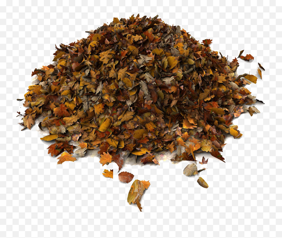 Download Rummage Sale Pile Of Leaves Png - Dried Leaves 3d Pile Of Leaves 3d Model,Leaves Png