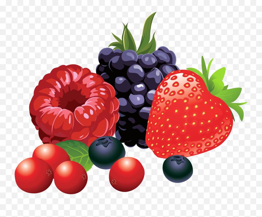 Vector Fruits Berries Transparent Png - Berries Clipart,Berries Png - free  transparent png images - pngaaa.com