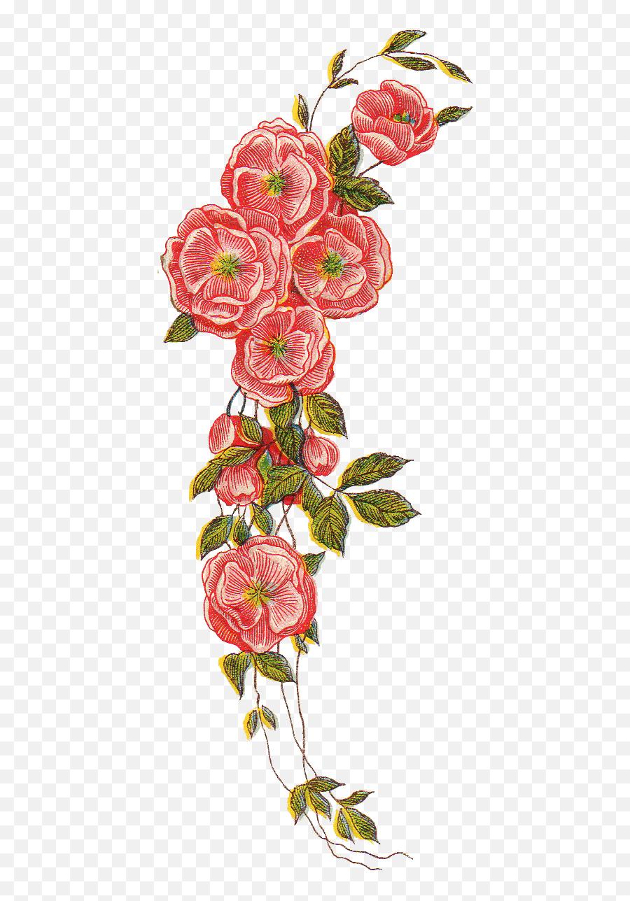 Vintage Floral Png - Vintage Flower Drawing Png,Vintage Flower Png