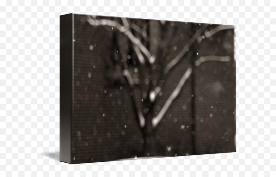 Falling Snow - Monochrome png